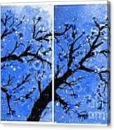 Snow On The Blue Cherry Blossom Tree Canvas Print