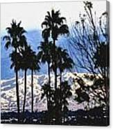 Snow Or Sun Shadows Canvas Print