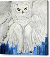 Snow Owl In Flight Canvas Print