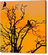Snow Owl Silhouette Canvas Print