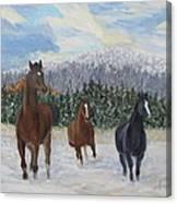 Snow Runners Canvas Print