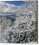Snow Scene At Berry Summit Canvas Print