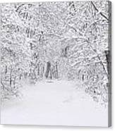 Snow Scene Tree Branches Canvas Print