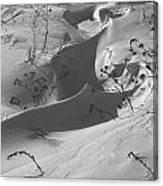 Snow Scroll Canvas Print