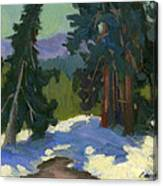 Snow Shadows Mammoth Mountain Canvas Print
