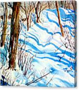 Snow Shadows Canvas Print
