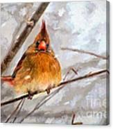 Snow Surprise - Painterly Canvas Print