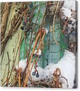 Snow Vines Canvas Print