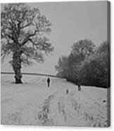 Snow Walkers Canvas Print