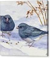 Snowbirds Canvas Print