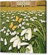 Snowdrop Day, Hatfield House Canvas Print