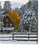 Snowed In At The Ranch Canvas Print