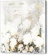 Snowfairy Canvas Print