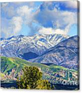 Snowing In Orange County Canvas Print