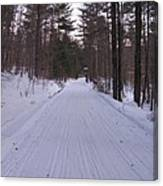 Snowmobile Trail Canvas Print