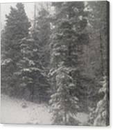 Snowscape Taos Canvas Print