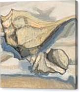 Snowshell Canvas Print