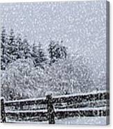 Snowstorm Coming Canvas Print
