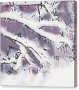 Snowtract Canvas Print