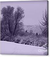 Snowy Bench In Purple Canvas Print