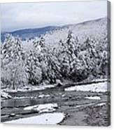 Snowy Catskill Creek  Canvas Print