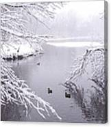 Snowy Day Ducks Canvas Print
