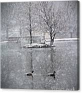Snowy Day On The Island Canvas Print