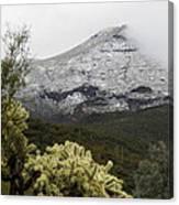 Snowy Desert Mountain 1 Canvas Print