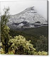 Snowy Desert Mountain Canvas Print