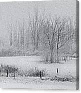 Snowy Fields Canvas Print