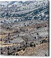 Snowy Foothills Canvas Print