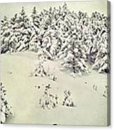 Snowy Forest Vintage Canvas Print