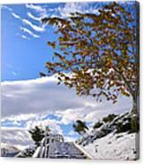 Snowy Lake Elsinore Canvas Print