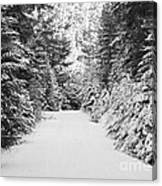 Snowy Mountain Road - Black And White Canvas Print