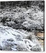 Snowy Mountain Stream V2 Canvas Print