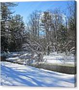 Snowy Otter Brook Canvas Print
