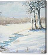 Soft As Snow Canvas Print