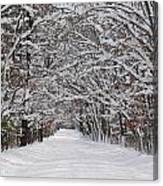 Snowy Road - 3 Canvas Print