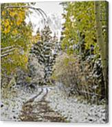 Snowy Road In Fall Canvas Print