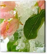 Snowy Spring 1 - Digital Painting Effect Canvas Print