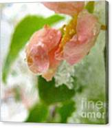 Snowy Spring 3 - Digital Painting Effect Canvas Print