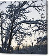 Snowy Sunrise Canvas Print