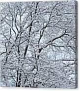 Snowy Tree Limb Maze Canvas Print