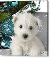 Snowy White Puppy Present Canvas Print