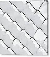 Snowy Wire Netting Canvas Print
