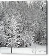 Snowy Woodland Canvas Print