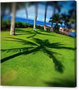 So Hawaiian... Canvas Print
