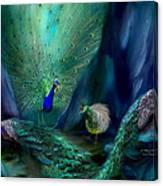 So Many Peacocks Canvas Print