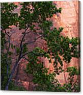 So Zion 3 Canvas Print