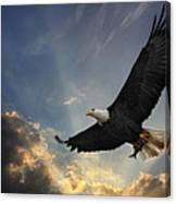 Soar To New Heights Canvas Print